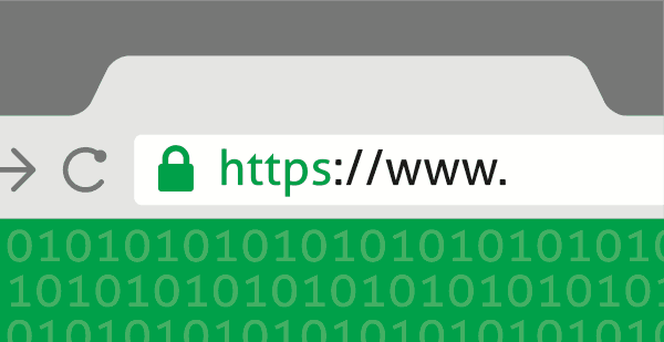 Web Hosting Security Guide